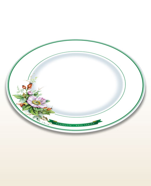 Herbal motif plate rose hip