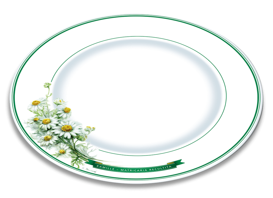 Herbal Design Plate Chamomile Underberg English