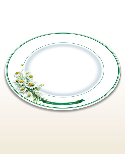 Herbal motif plate chamomile