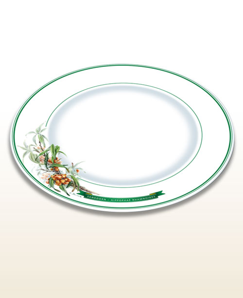 Herbal motif plate sea buckthorn