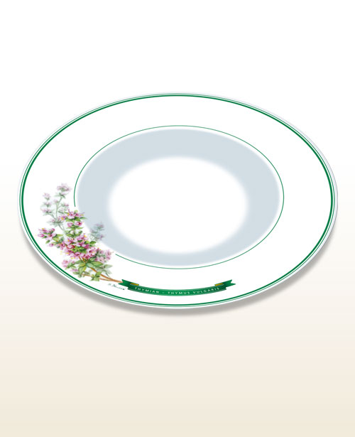 "Gourmet and pasta plate – motif ""thyme"""